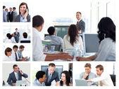 Collage van bedrijf met behulp van technologie — Foto de Stock