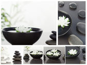 Collage of several bowls with pebbles in a medical context — Stock Photo