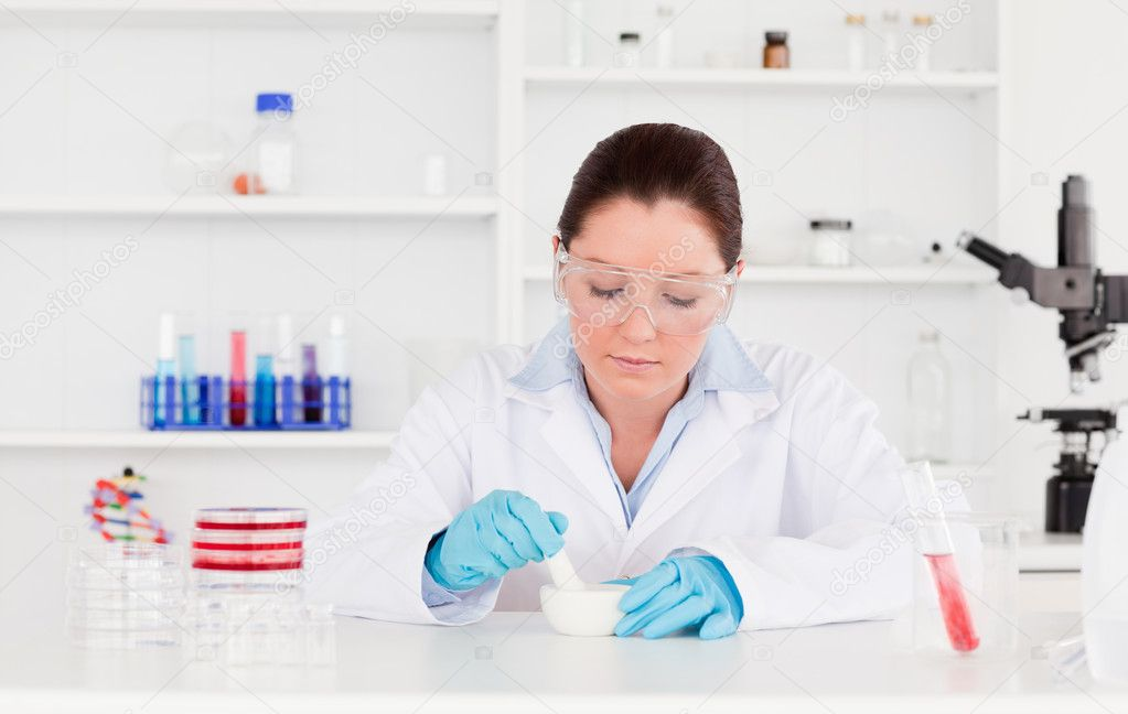 Young scientist preparing an experimentation — Stock Photo #10600855