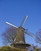 Moinho holandês tradicional — Fotografia Stock