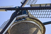 Windmill in Alkmaar — ストック写真