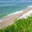 Beautiful sea view from the cliff with green grass and flo — Stock Photo #10715288