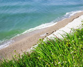 Beautiful sea ​​view from the cliff with green grass and flo — Stock Photo