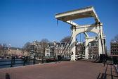 Magere Brug (skinny bridge) in Amsterdam — Stock Photo