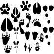 Set of footprints - Stock Vector