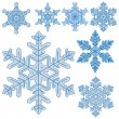 Set of realistic snowflakes — Stock Vector