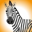 Stock Vector: Zebra portrait