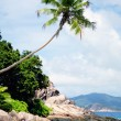 Beach on the Seychelles — Stock Photo