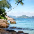 Tropical Beach — Stock Photo #9847906