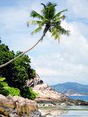 пляж на сейшельских островах — Стоковое фото