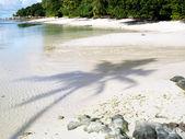 Sunny beach — Стоковое фото