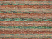 Green & Terra Cotta Brick Wall — Stock Photo