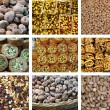 Collection of fresh and dried fruit — Stock Photo
