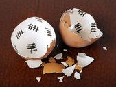 Broken egg shell — Stock Photo