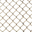 Old lattice isolated on white — Photo