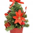 Little christmas tree - Stock Photo