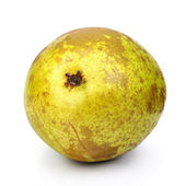 Old pear — Stock Photo