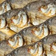 Dry fishes — Stock Photo #10273477