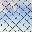 Lattice — Stock Photo #10273579