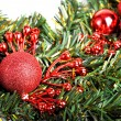Christmas ball on fir — Stock Photo