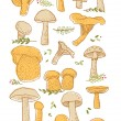 Mushrooms doodle set — Stock Vector