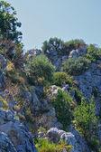 Massive big rocks — Stock Photo
