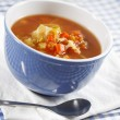 Country vegetable soup - Stock Photo
