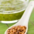 Pine nuts in a spoon with pesto — Stock Photo