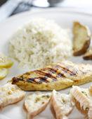 Capesante e pollo alla griglia — Foto Stock