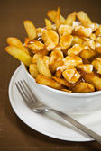 Poutine meal — Stock Photo