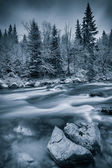 川の近くの寒い冬 — ストック写真