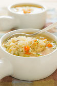 Chicken rice soup — Stock Photo
