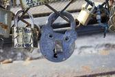 Cadenas amour love locks Paris — Stock Photo
