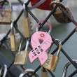 Cadenas amour love locks Paris - Foto de Stock
