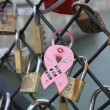 Cadenas amour love locks Paris — Stock Photo