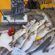 Fresh fish market marché aux poisson paris 4 — Foto Stock #9951015