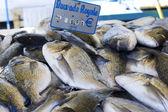 Fresh fish market marché aux poisson paris 3 — Stock Photo