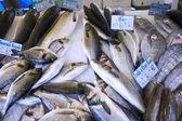 Fresh fish market marché aux poisson paris 9 — Stock Photo