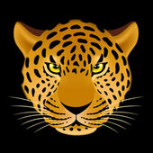 Leopard head — Stock Vector