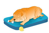 Sleeping Chinese Shar-Pei — Stock Vector