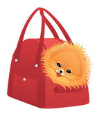 Happy Pomeranian spitz — Stock Vector