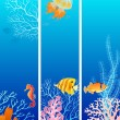 Vertical sea life banner — Stock Vector #10145780