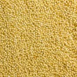 Dry Uncooked Millet Texture, Background — Stock Photo