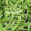 Green arugula, — Stock Photo #10053563