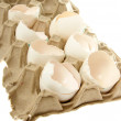 Egg shell — Stock Photo