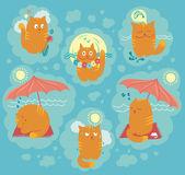 Summer Cats — Stock Vector