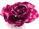 3D rose made of glass — 图库照片