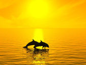 Two dolphins floating at ocean on sunset — Stock Photo