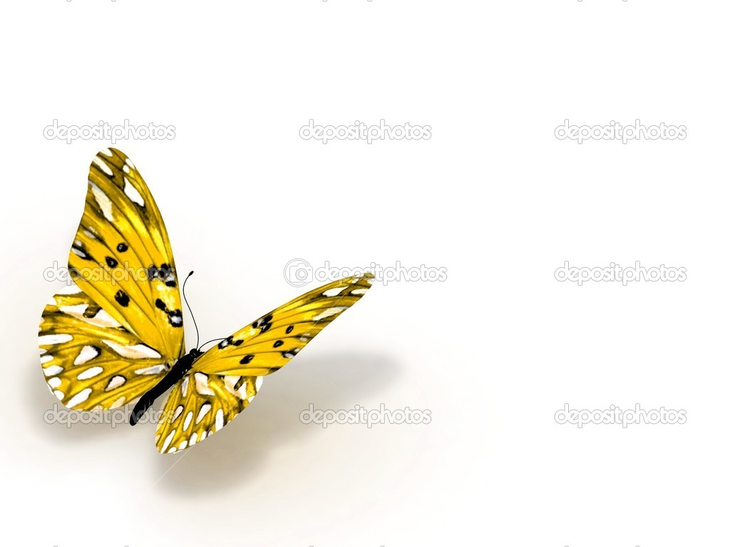 3D Butterfly isolated on white. — Stock Photo #10011398