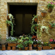 Doorway garden, Italian village — Foto Stock